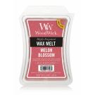 WOODWICK MELON BLOSSOM WAX MELT